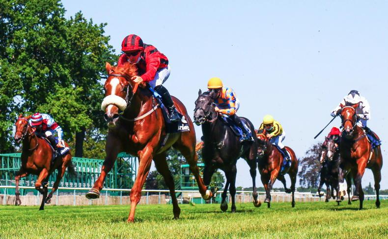 Atomic Force to continue career in Hong Kong