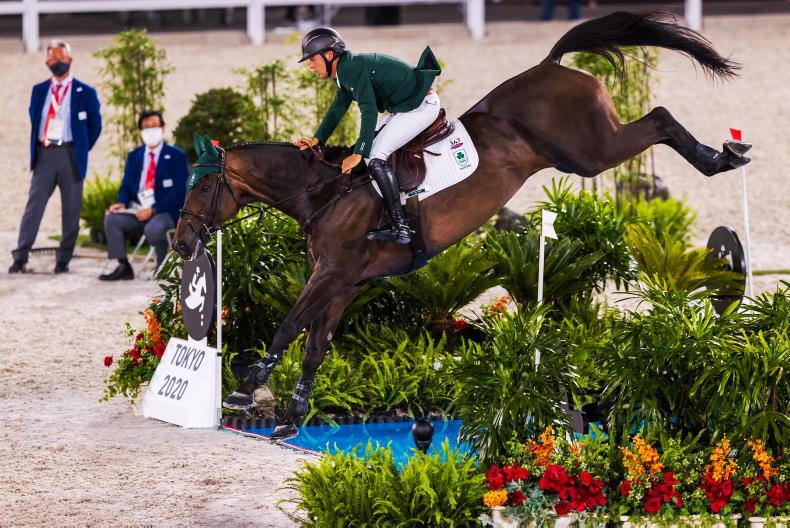 HORSE SENSE: Shoes fit for an Olympian