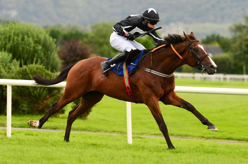 KILBEGGAN SATURDAY: Wonder can return to winning ways at Kilbeggan