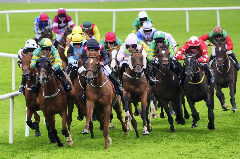 HORSES TO FOLLOW: 'He is worth following very closely through the autumn'