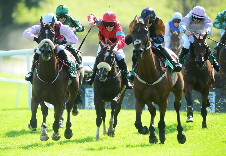 DOWNPATRICK SUNDAY: Find Joy with Hourigan's mare returning to Downpatrick