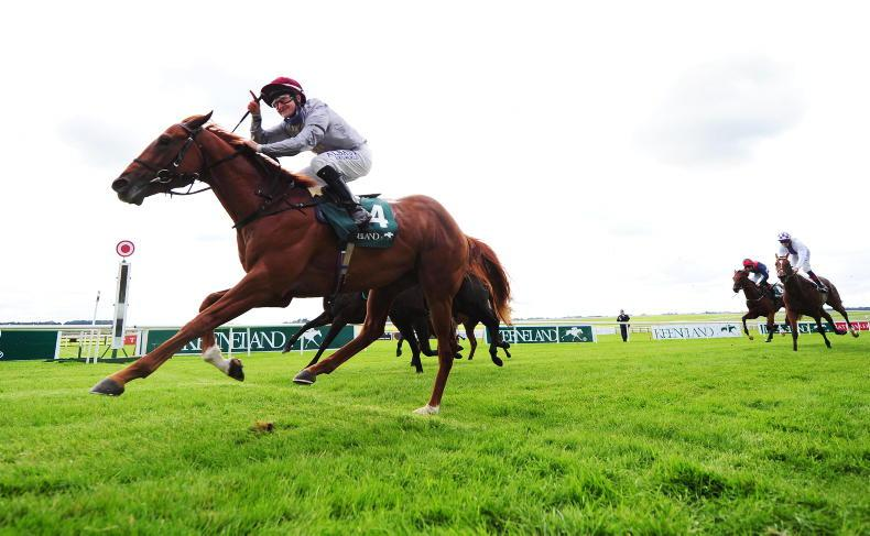 CURRAGH SUNDAY: River rolls from the front for high flying Foley