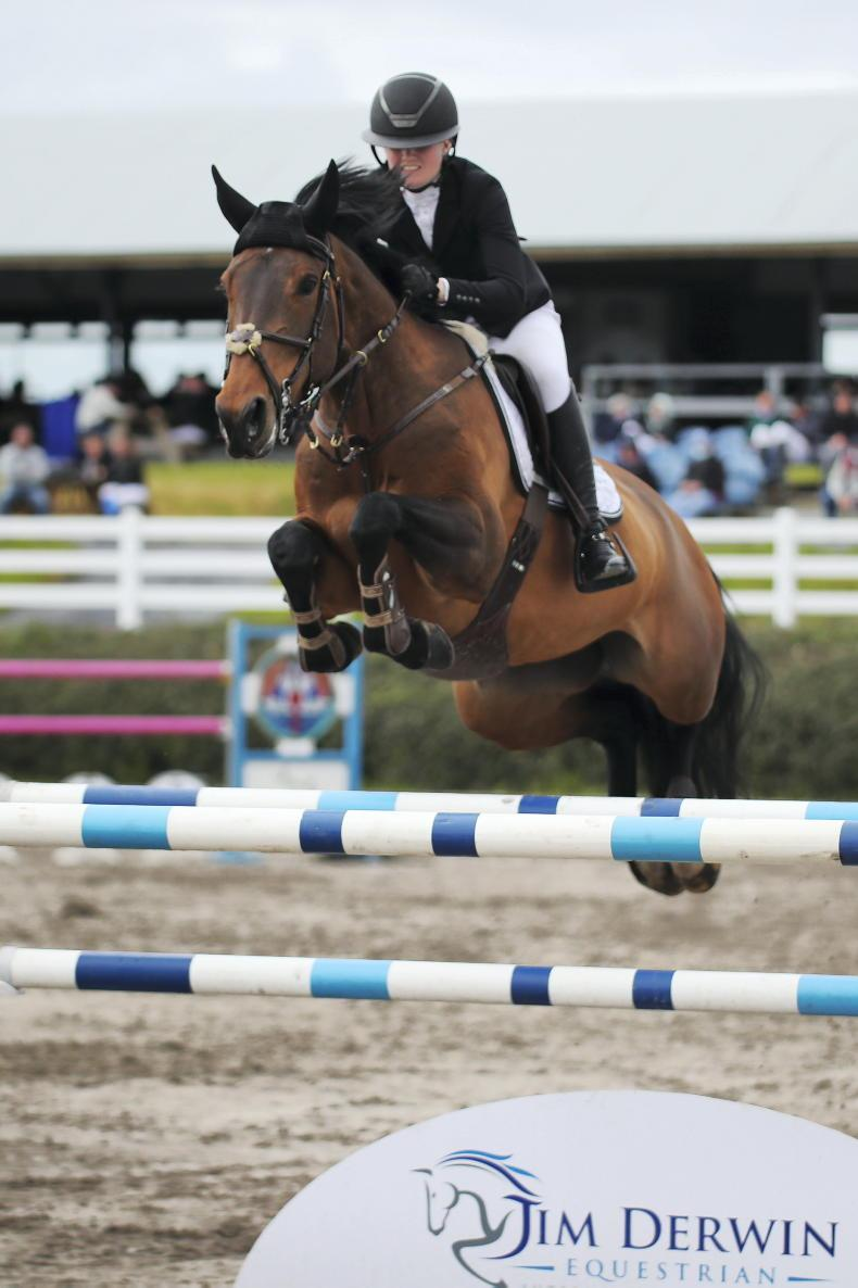 RDS NATIONAL CHAMPIONSHIPS: Experienced older horses take to main arena