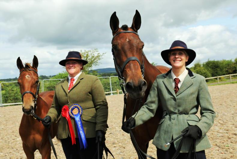 AROUND THE COUNTRY: Roscrea rosettes