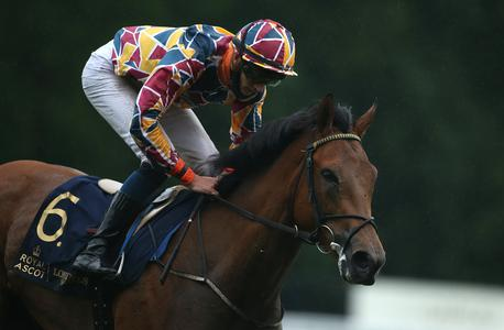 Create Belief steps up in style at Leopardstown
