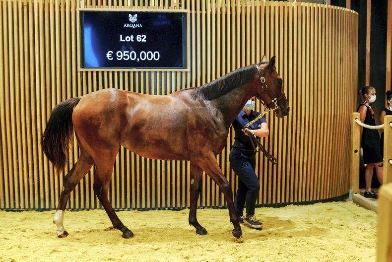 VIDEO: Godolphin pay €950,000 for Kingman filly