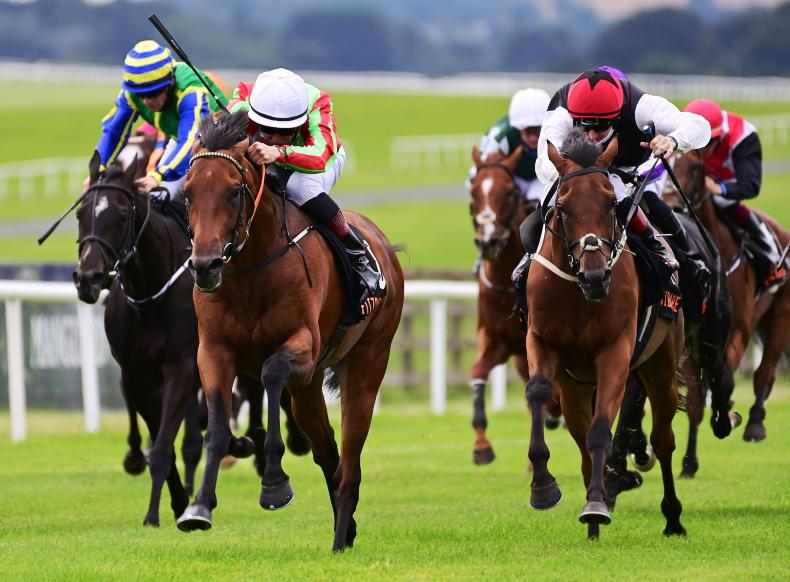 CURRAGH FRIDAY: Earlswood could be Champion class