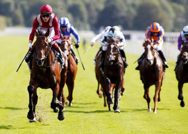 YORK WEDNESDAY: Mighty Mishriff a class apart