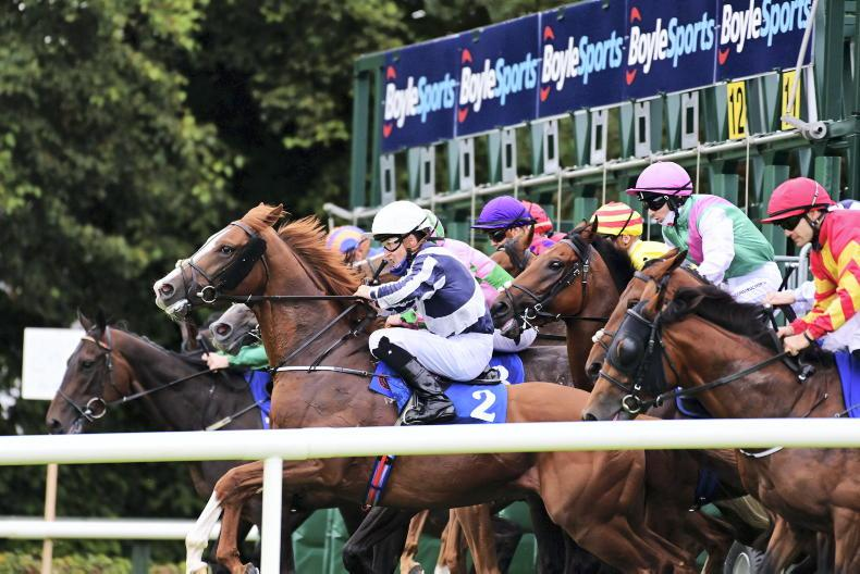 NEWS: Prize money and fixture list control contribute to healthy field sizes