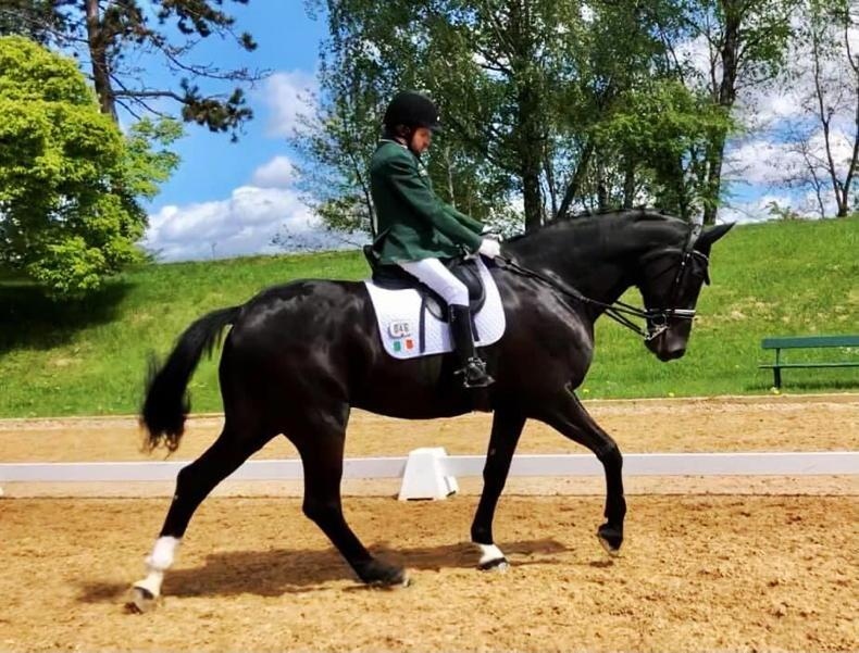 PARALYMPIC PREVIEW: The Irish para dressage riders