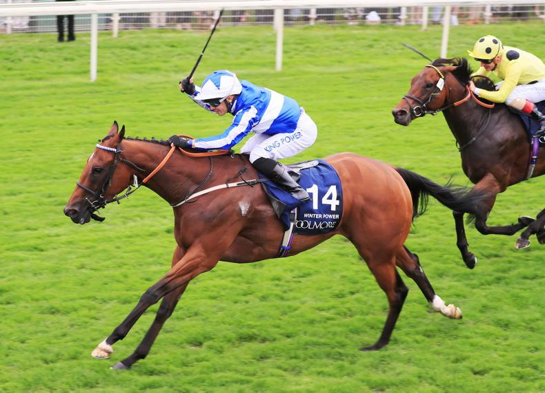YORK FRIDAY: Easterby wins with Power-packed filly
