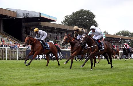 Alan King eyeing Perfect Power rematch with Asymmetric