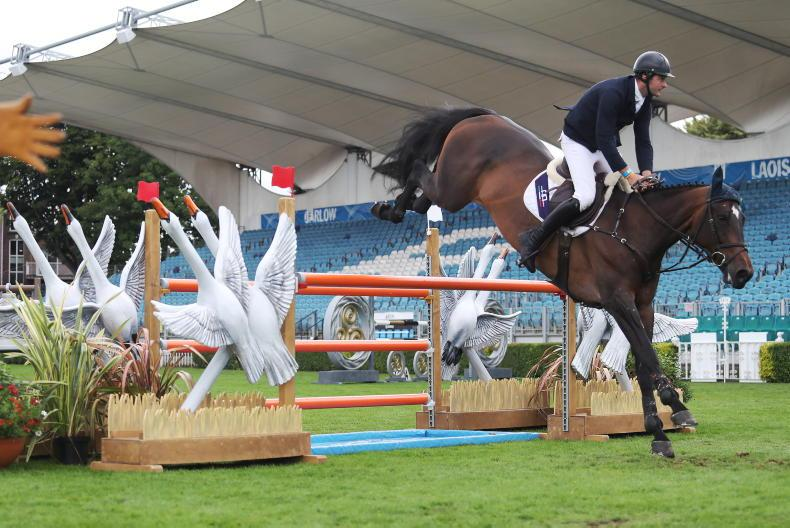 RDS NATIONAL CHAMPIONSHIPS: CBI Bella Donna proves a leading lady