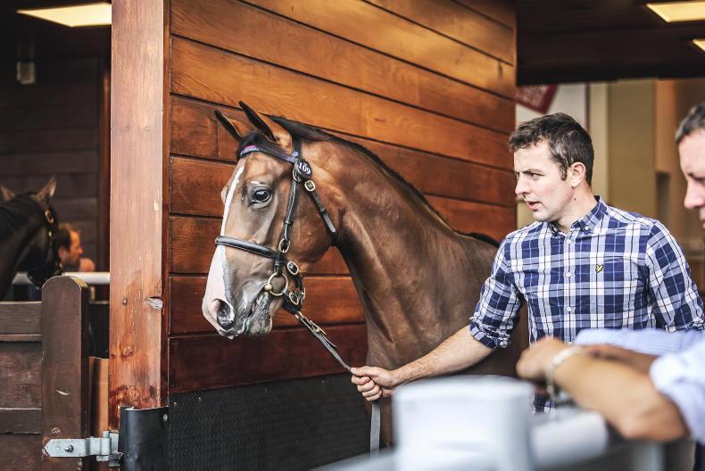 SALES: £120,000 Dark Angel colt tops Doncaster trade