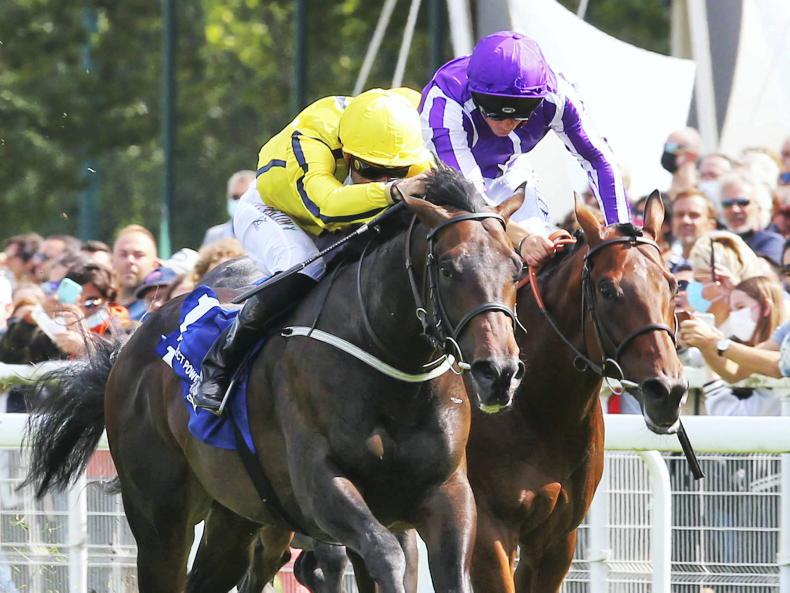 FRANCE: Perfect surge of Power by champion juvenile