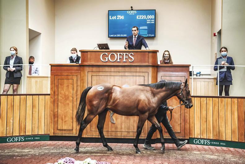 GOFFS UK PREMIER SALE: Sale champion gets sale headliner