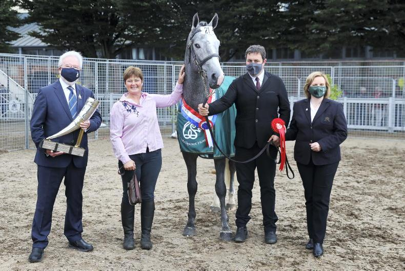 BREEDERS' 10 – ANN LAMBERT: The horse that changed a family's lives