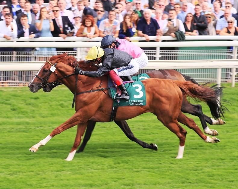 TIME WILL TELL: Stradivarius a match for the sprinters