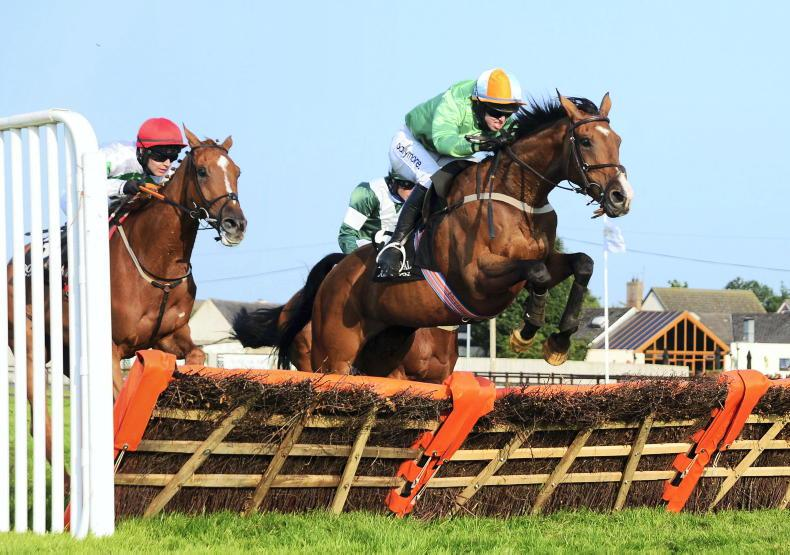 DOWN ROYAL FRIDAY: Wilson's Storm comes with the perfect run