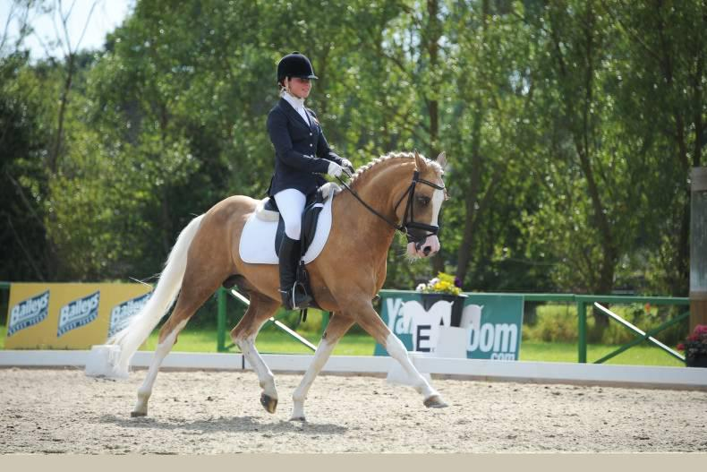 Pony dressage riders secure European qualification