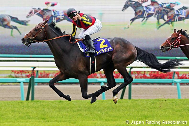 JAPAN: Duramente - Champion freshman sire of 2020 dies