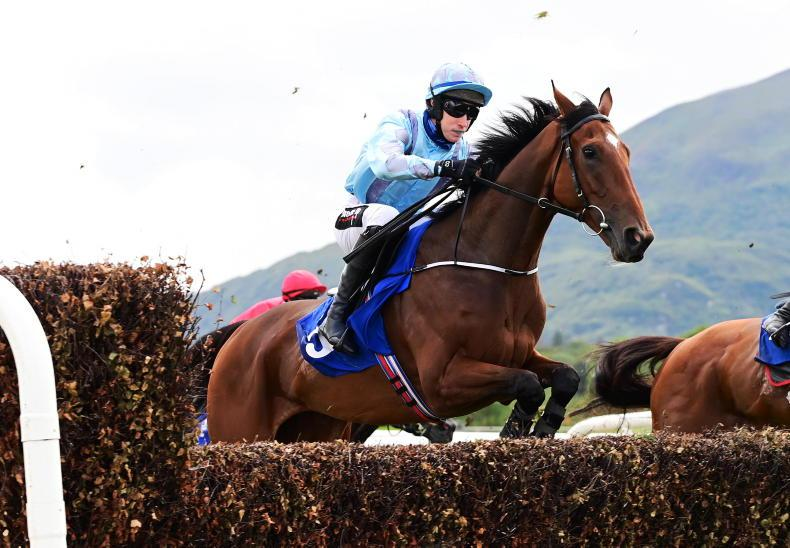 WEXFORD SATURDAY PREVIEW: Altar is worth a bit of worship