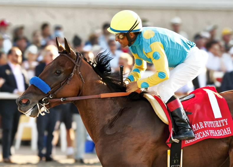 AMERICAN:  Flying Pharoah gallops on