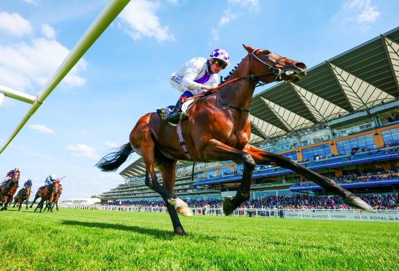 NEWS: Poetic Flare switched to Irish Champion Stakes