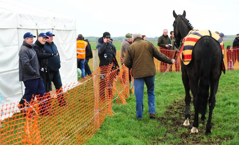 MAGILL BROS: Lack of runners could threaten jobs and breeders