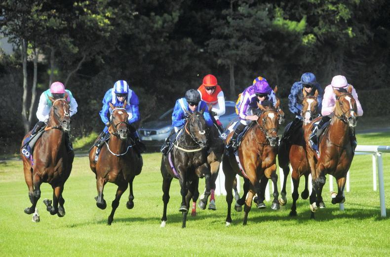 RYAN MCELLIGOTT: Ireland the powerhouse of European racing