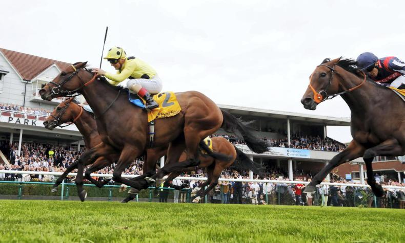 TIME WILL TELL: Emphasis on speed key in Emaraaty's Spint Cup success