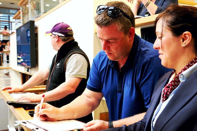 SALES: Gordon Elliott buys three from Gigginstown dispersal