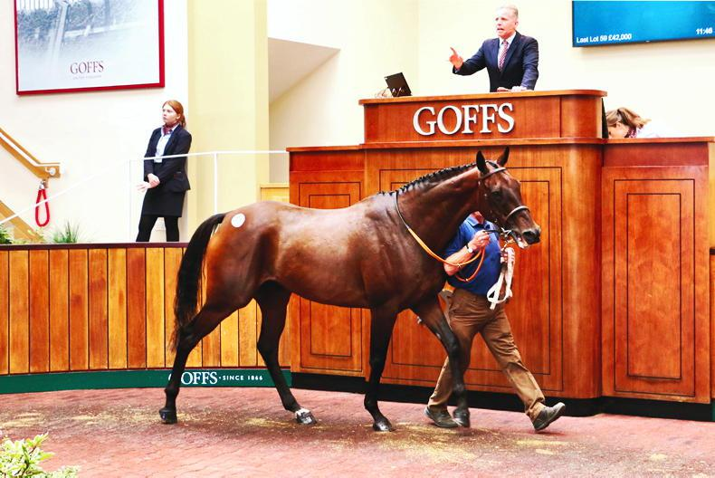 GOFFS UK SEPTEMBER HIT SALE: High Stakes for new venture