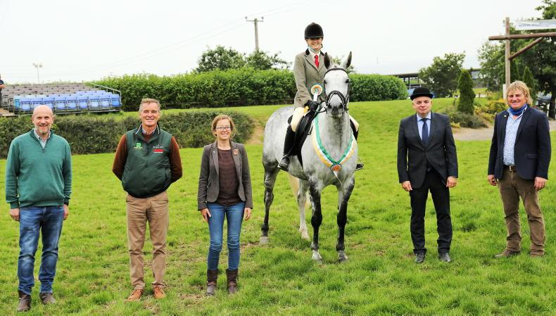 AROUND THE COUNTRY: Big success for TIHA performance championship
