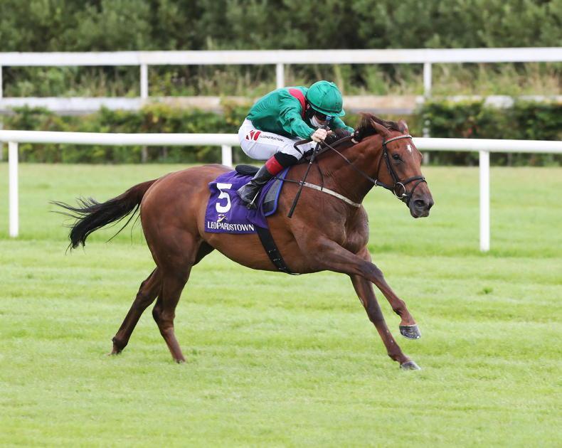IRISH CHAMPION STAKES PREVIEW: Take Tarnawa for a champion performance