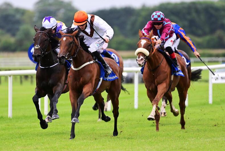 MATRON STAKES PREVIEW: Pearls can shine brightest in Matron