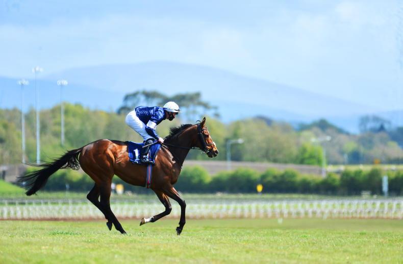 IRISH CHAMPIONS WEEKEND: Five talking points on the turf