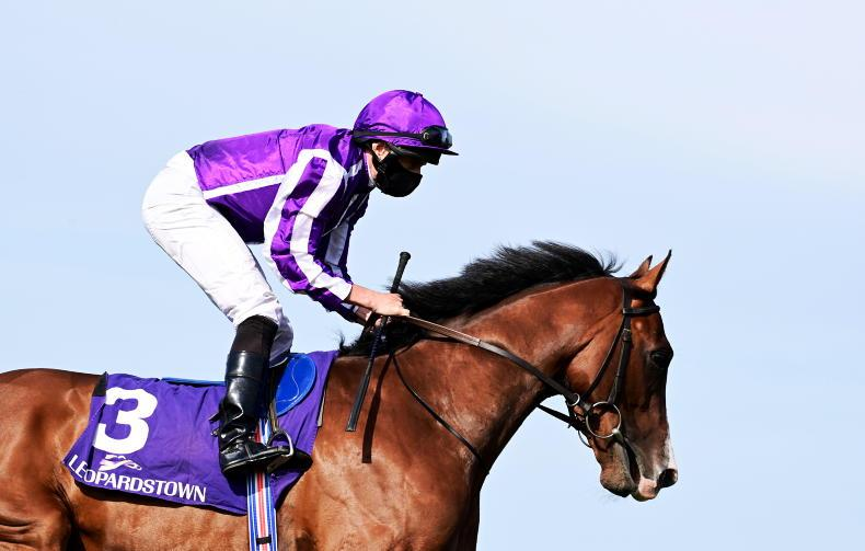 LADBROKES NAP TABLE: Selections for Leopardstown and the Curragh