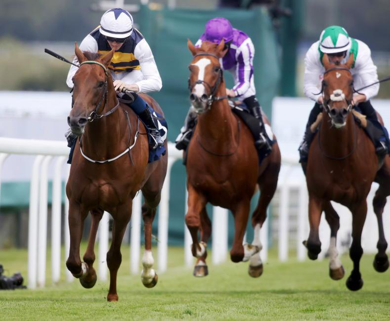 Improving Ottoman Emperor out to fill Leger void for Murtagh