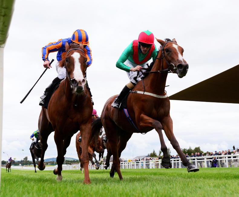CURRAGH SUNDAY: Coco all class to deny Love in Blandford