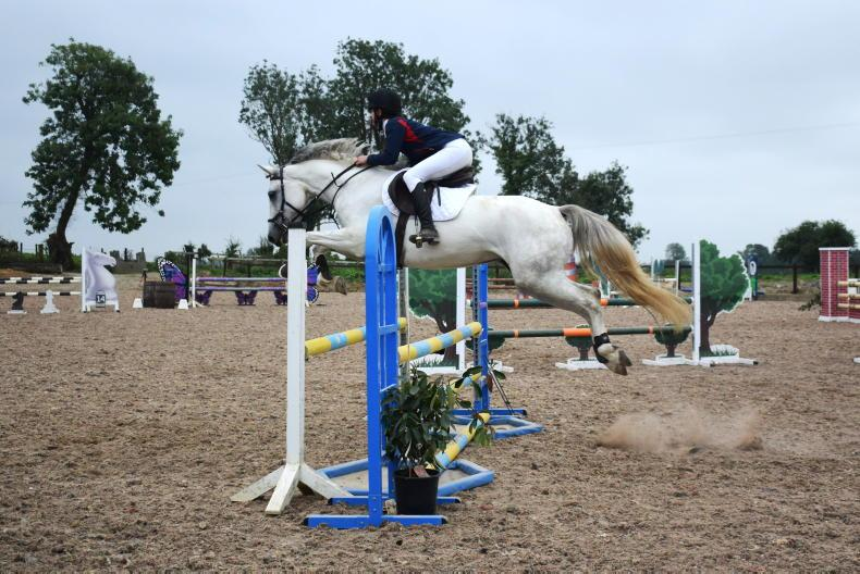 PONY TALES: Autumn show a hit for Golden Grove RC