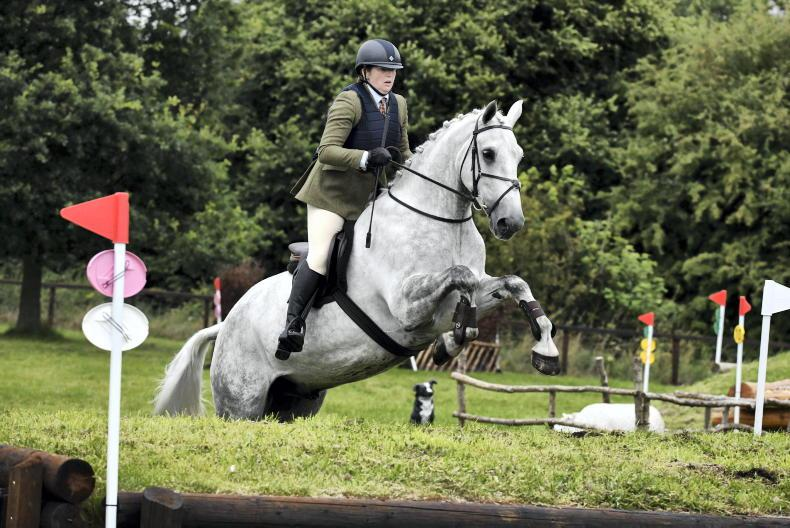 BALMORAL PREVIEW: Vital showcase for quality native breeds