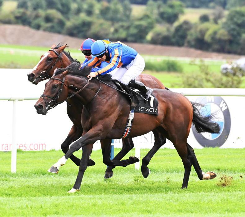 PUNCHESTOWN TUESDAY: Alizarine is the winner alright
