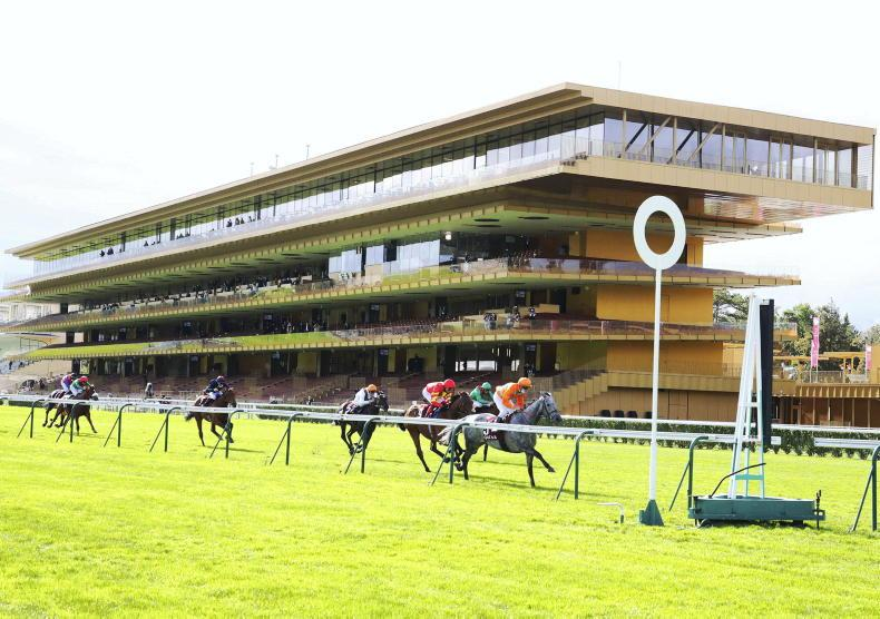 FRANCE: France not a happy hunting ground for Aidan this time