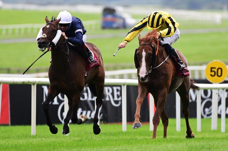 TIME WILL TELL: Sonnyboy tenacious in grueling St Leger