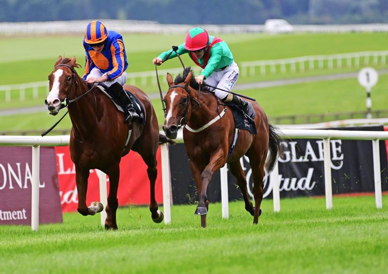 TIME WILL TELL: Twomey's filly most impressive late on in Blandford