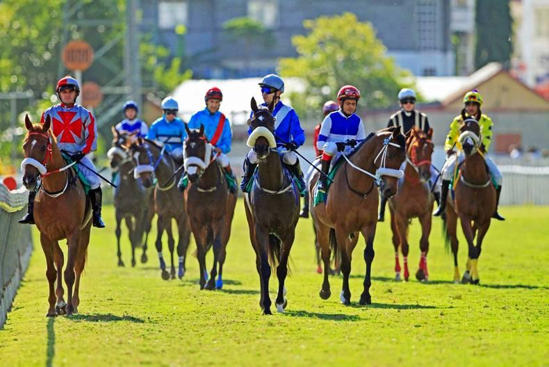 FEATURE: Horse racing in Mauritius