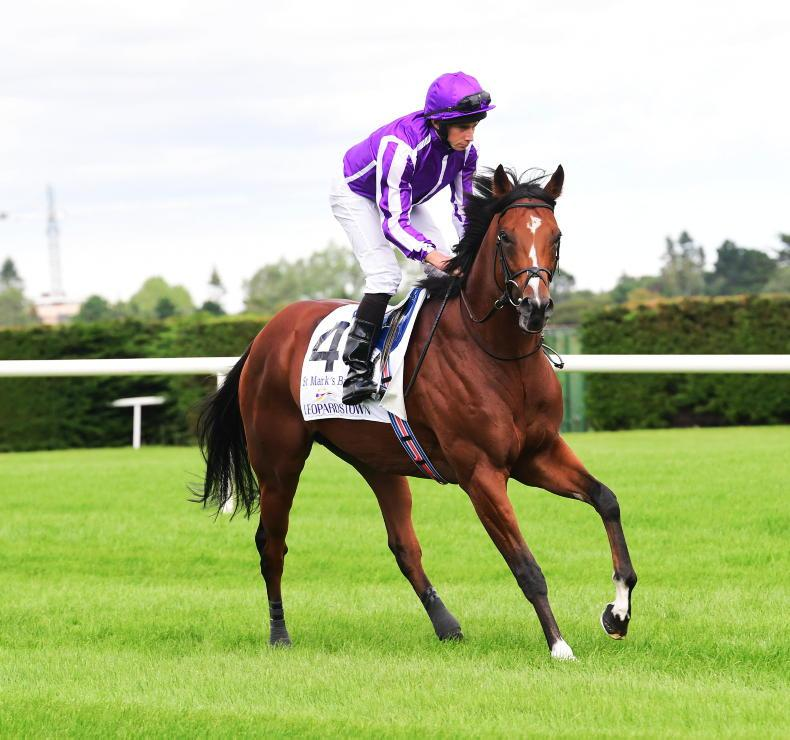 Irish Champion Stakes win sees St Mark's Basilica top Cartier Horse Of The Year