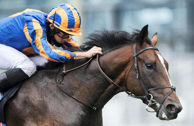 NEWS IN BRIEFS: Racing and bloodstock stories from the September 18th edition