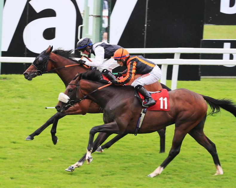 RORY DELARGY BRITISH PREVIEW: It's all systems go for Ayr affair